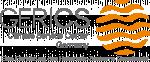 explainity Referenz: Erklärvideo für GERICS