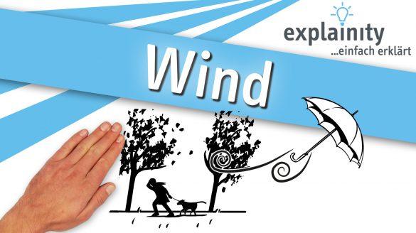 Wind 2021 Explainity Thumbnail